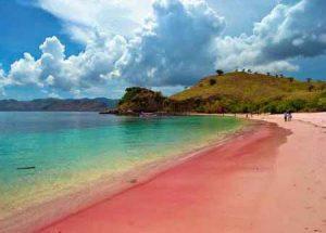 Pink_Beach_Lombok2