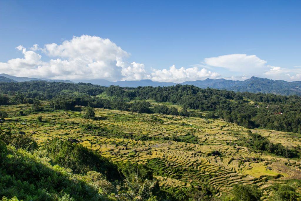 Tinimbayo landscape Toraja