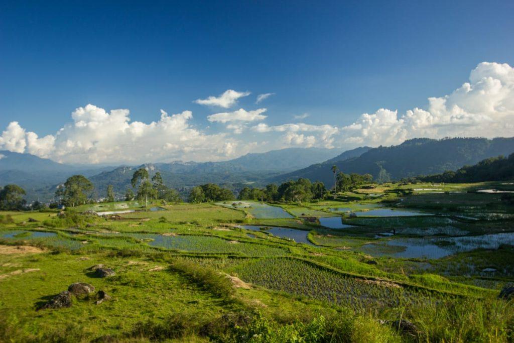 Batutumonga scenery Toraja