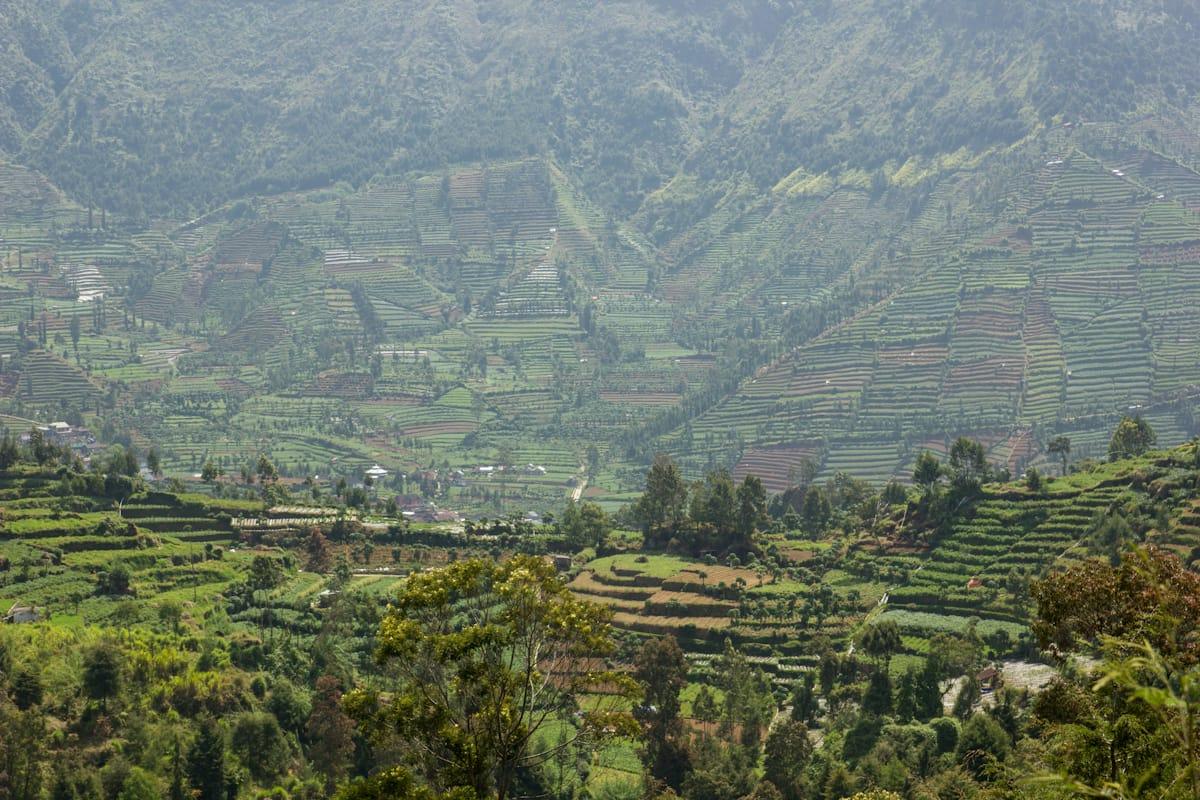 Dieng landscape