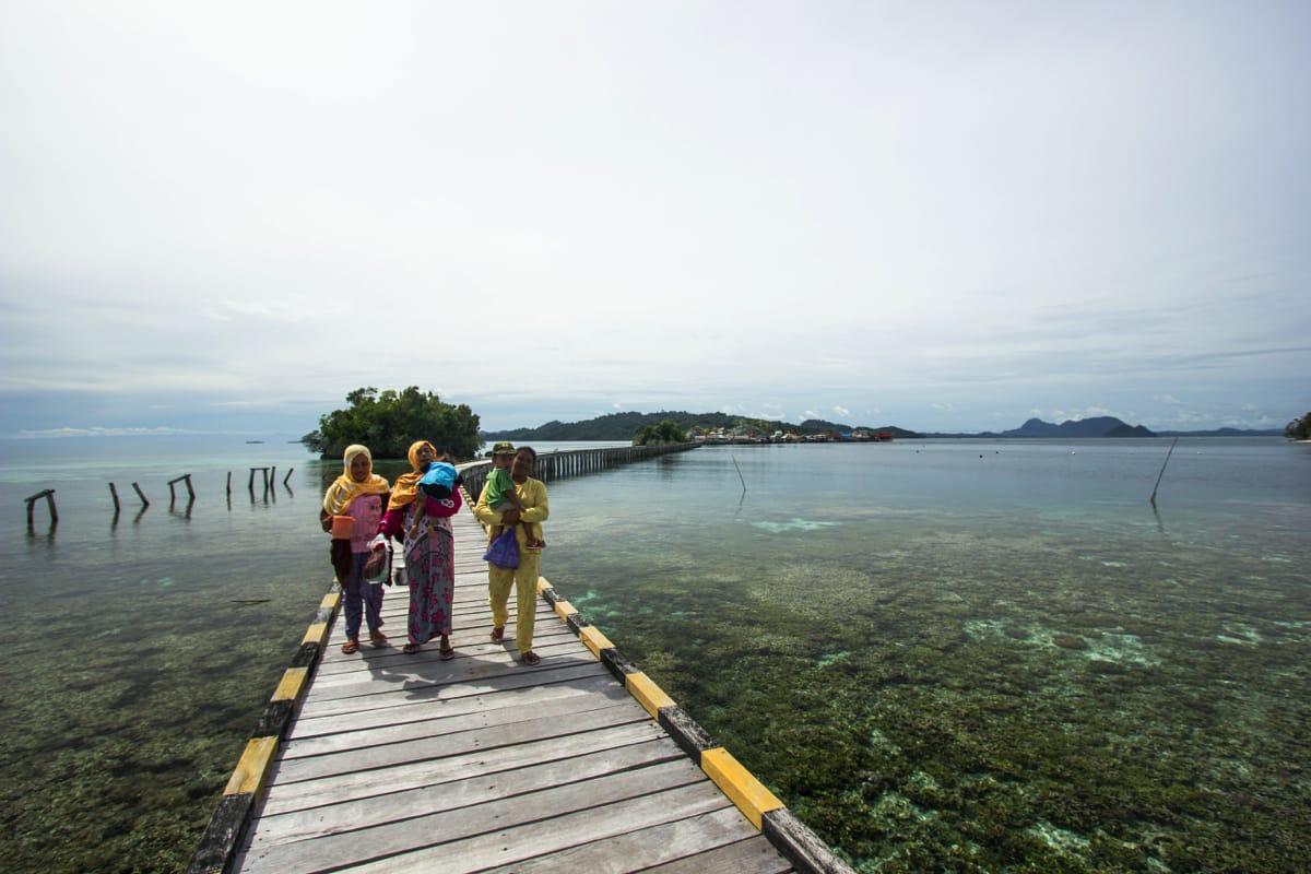 Pulau Papan