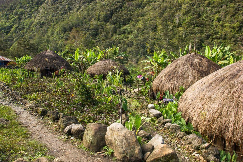 Yuarima Baliem valley