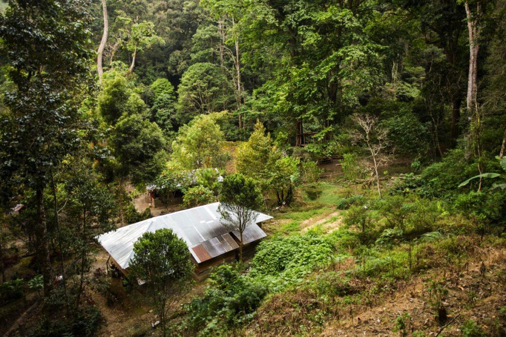Kedah Rainforest Lodges