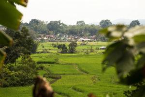 Bukittinggi landscapes