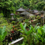 Central Bali