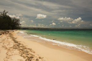 Beach East Sumba