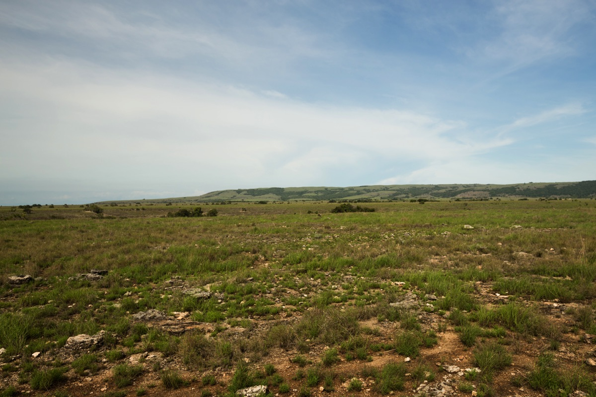North coast Sumba