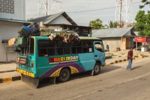 Bus Sumba