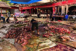 Funeral Toraja