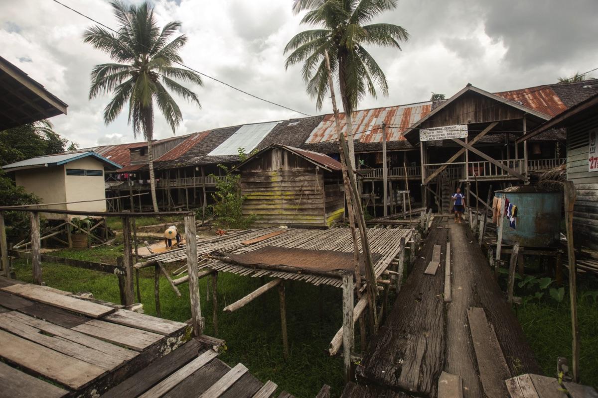 Nanga Nyabau