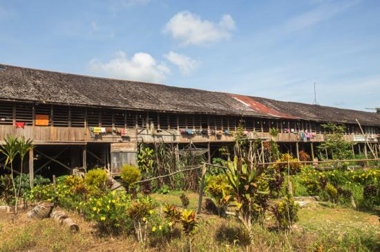 Longhouse Dayak Kapuas