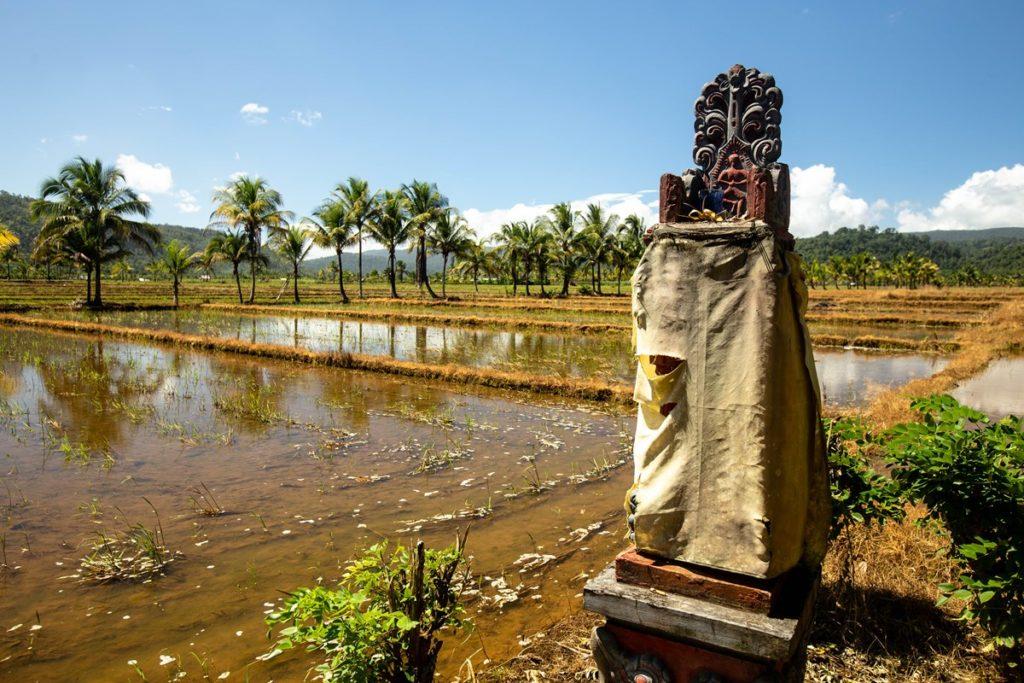 Bali Buton