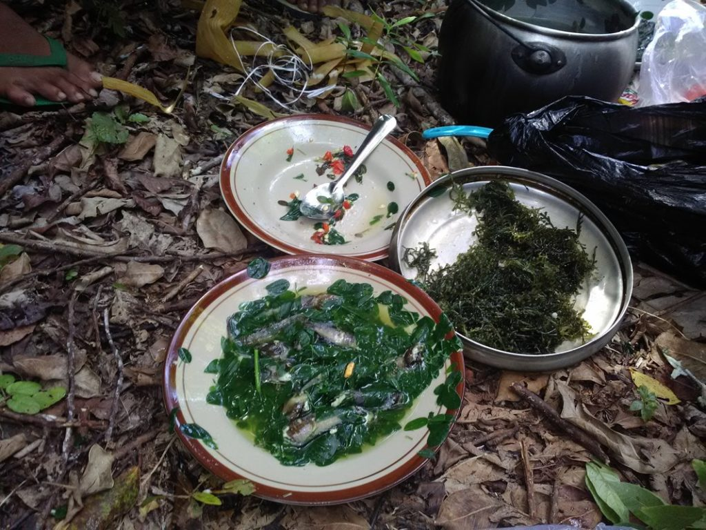Makan Hutan